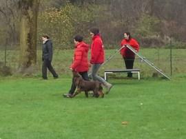 2014-11-23_Hundeprüfung_LUNA (25)